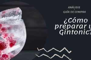 ¿Cómo preparar el mejor Gin Tonic?