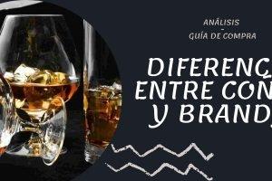 Diferencias entre coñac y brandy