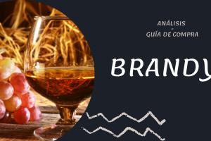 Mejores Brandys